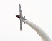 McGuire-Air-show-1767_v1.jpg